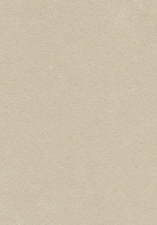 Sahara munkalap 47981 DC táblakép